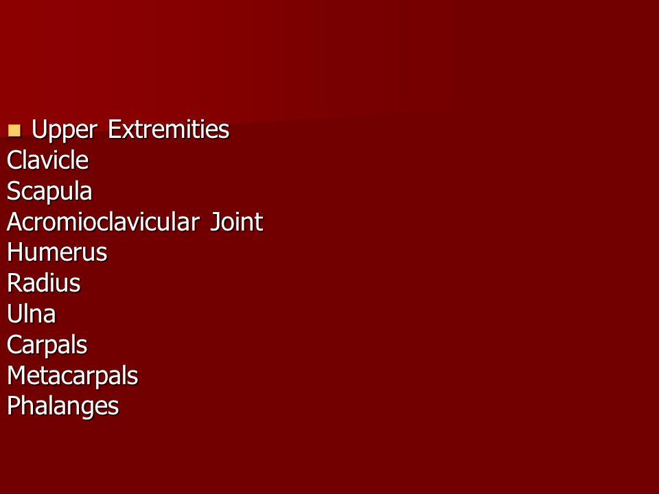 Acromioclavicular Joint Humerus Radius Ulna Carpals Metacarpals