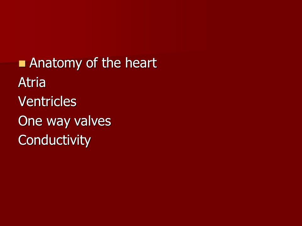 Anatomy of the heart Atria Ventricles One way valves Conductivity