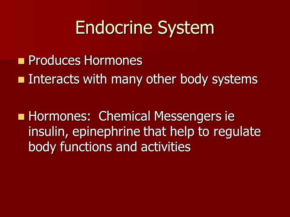 Endocrine System Produces Hormones