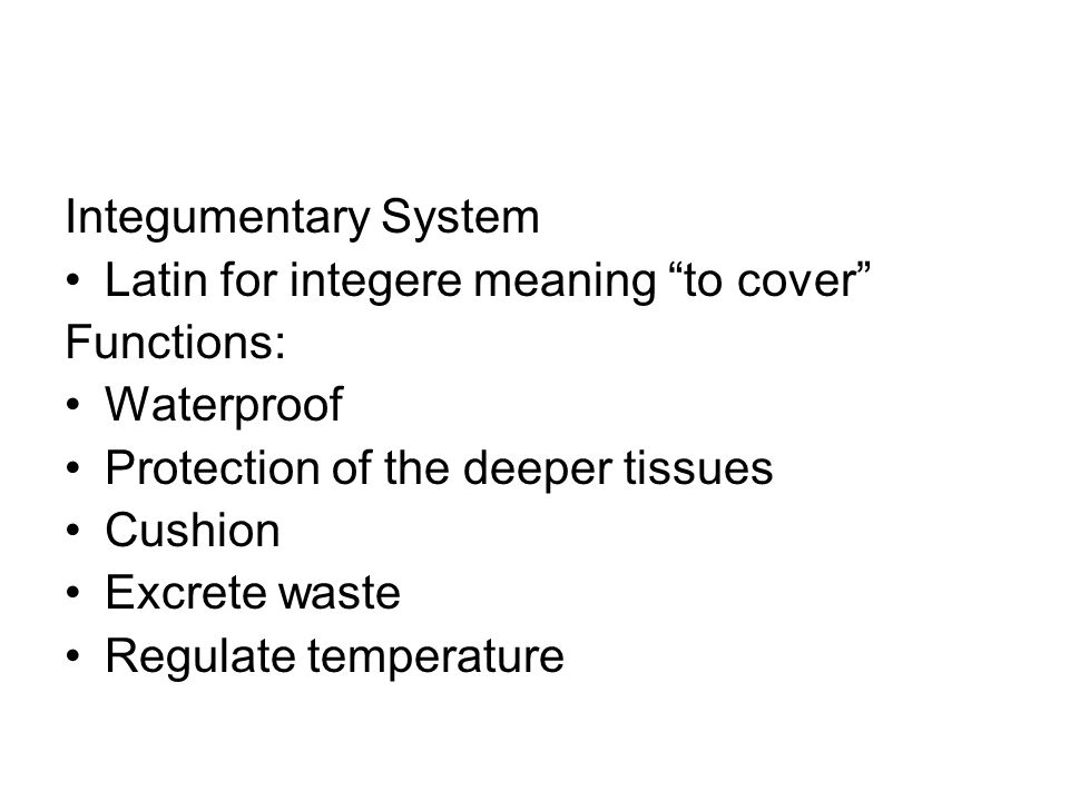 Integumentary System Latin for integere meaning to cover Functions: Waterproof. Protection of the deeper tissues.