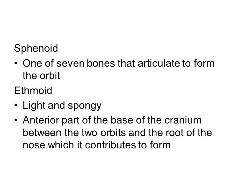 Sphenoid One of seven bones that articulate to form the orbit. Ethmoid. Light and spongy.