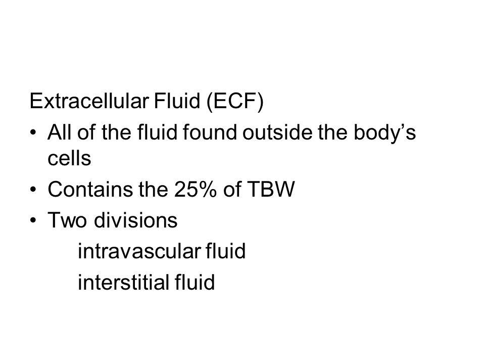 Extracellular Fluid (ECF)