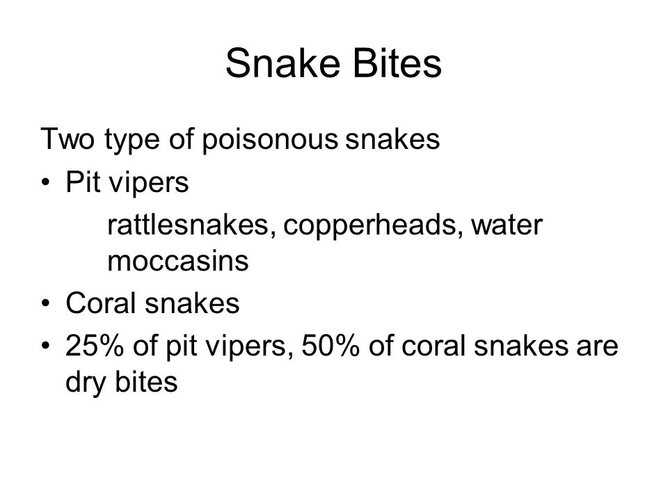 Snake Bites Two type of poisonous snakes Pit vipers