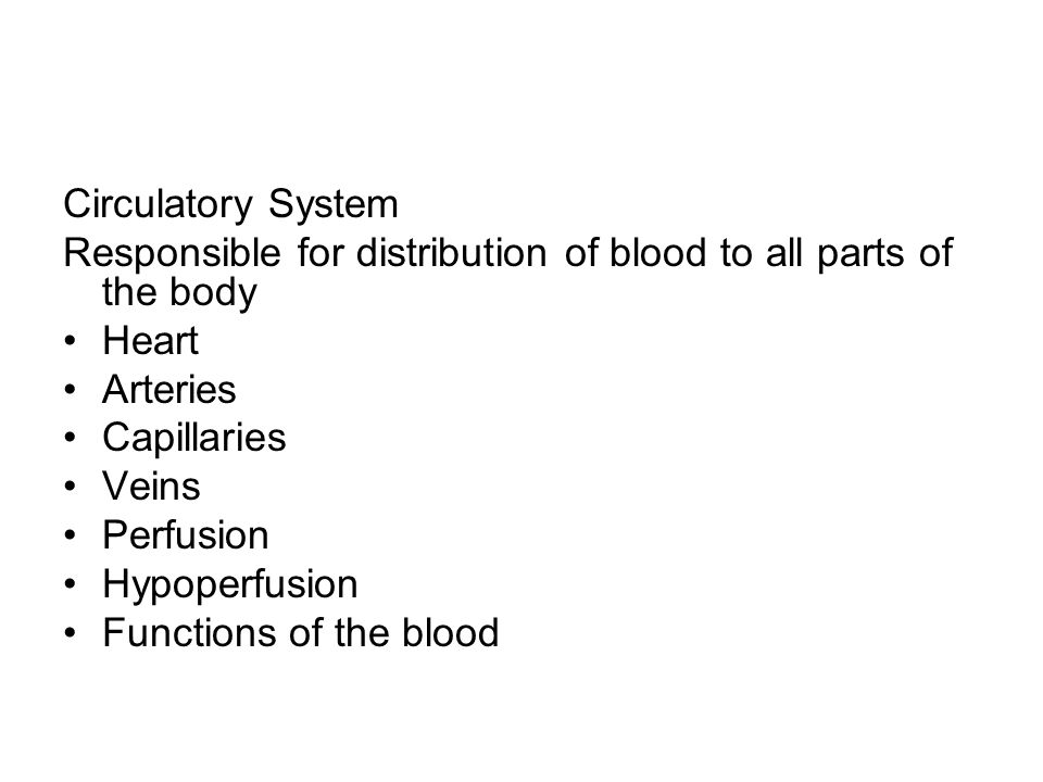Circulatory System Responsible for distribution of blood to all parts of the body. Heart. Arteries.