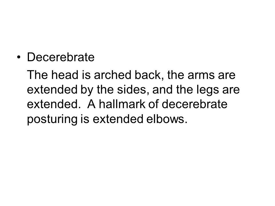 Decerebrate