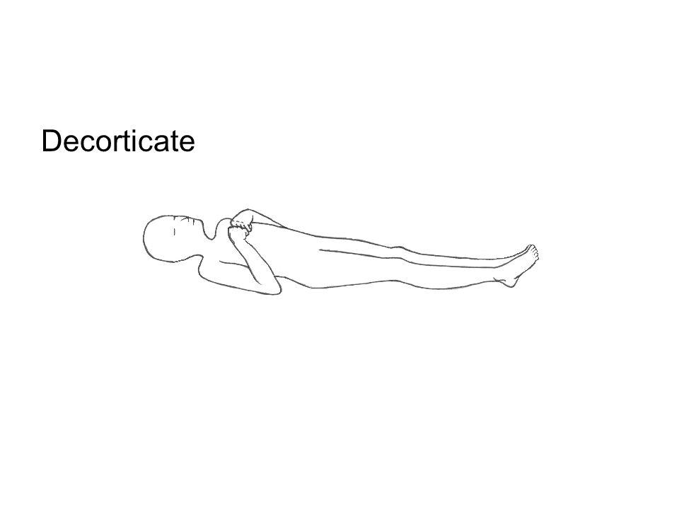 Decorticate