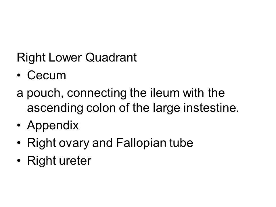 Right Lower Quadrant Cecum. a pouch, connecting the ileum with the ascending colon of the large instestine.
