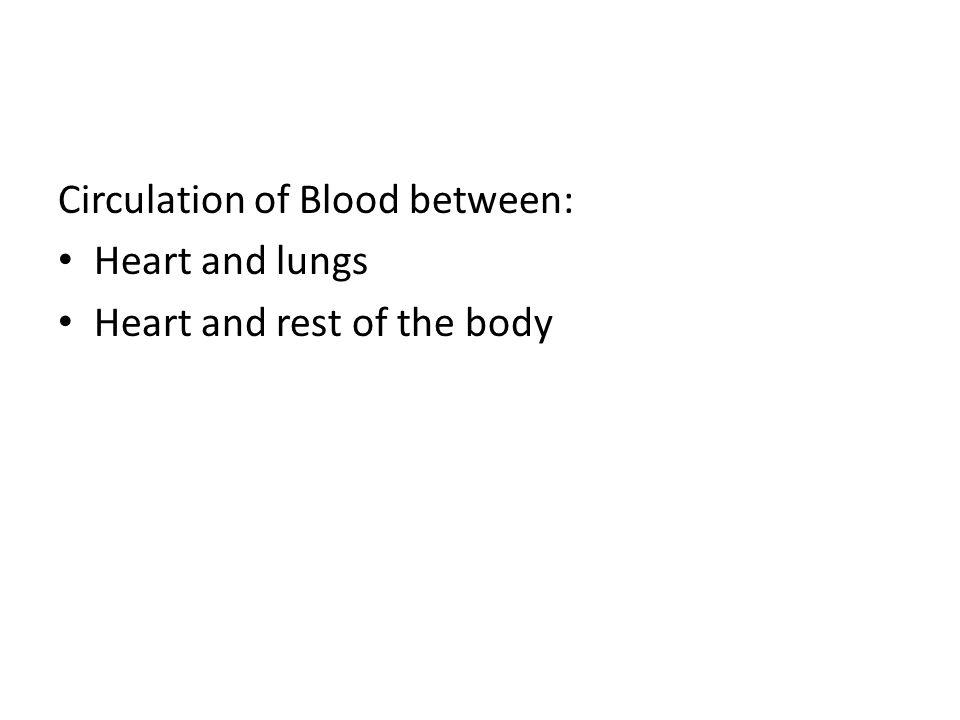 Circulation of Blood between: