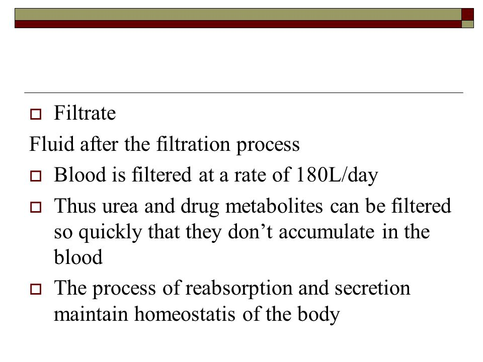 Filtrate Fluid after the filtration process. Blood is filtered at a rate of 180L/day.