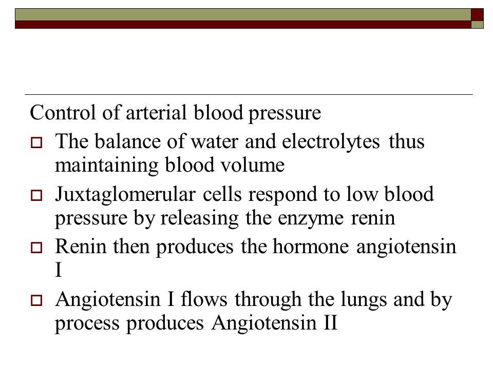 Control of arterial blood pressure