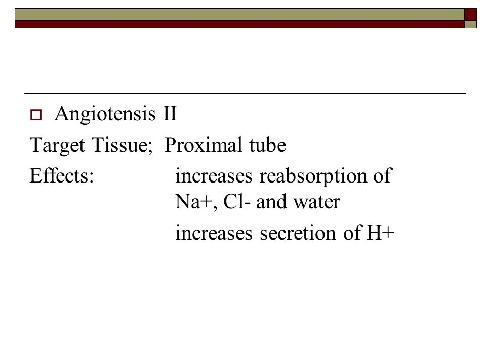 Angiotensis II Target Tissue; Proximal tube. Effects: increases reabsorption of Na+, Cl- and water.
