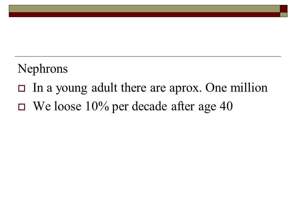 Nephrons In a young adult there are aprox. One million We loose 10% per decade after age 40