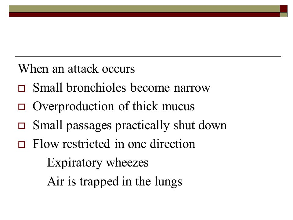 When an attack occurs Small bronchioles become narrow. Overproduction of thick mucus. Small passages practically shut down.