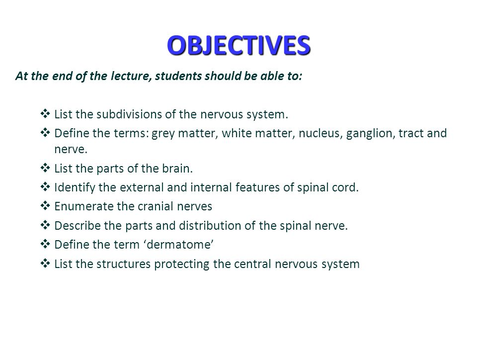 2 OBJECTIVES ...
