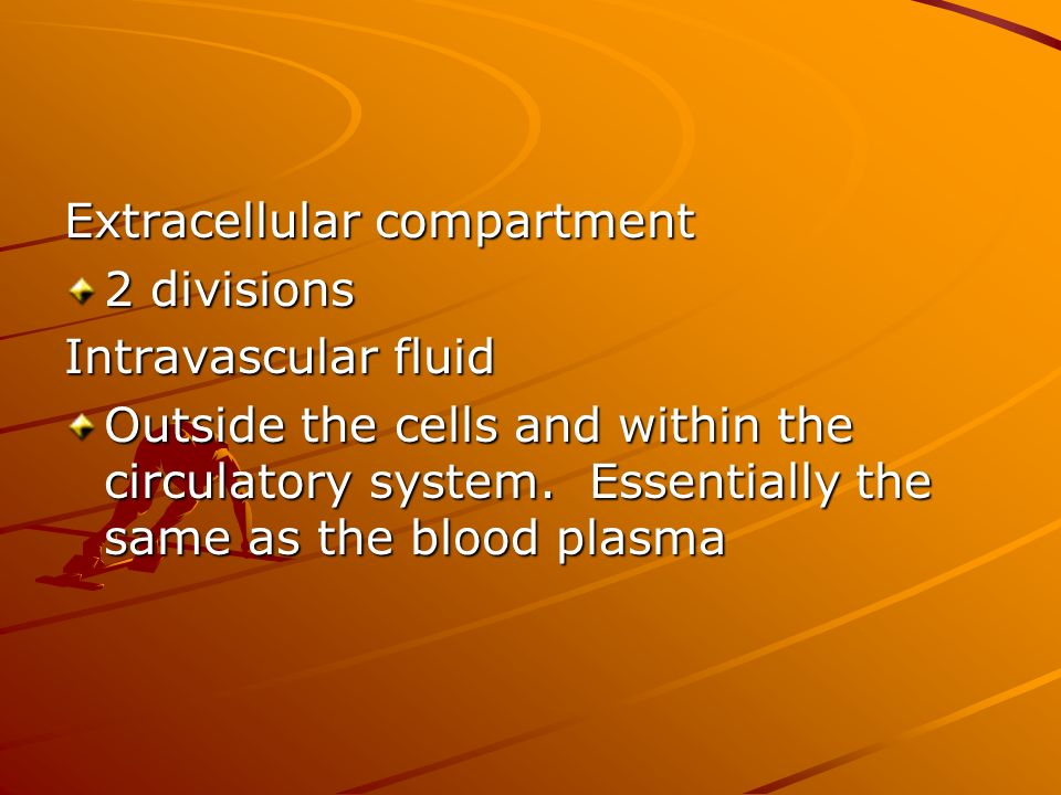 Extracellular compartment