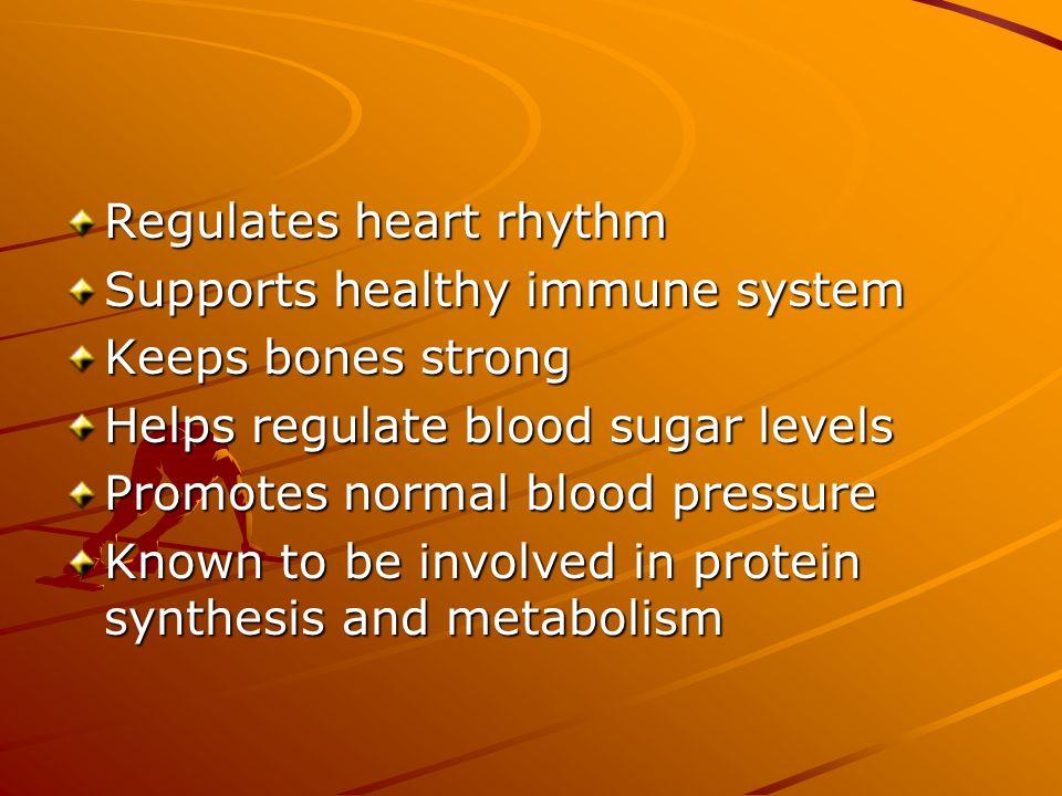 Regulates heart rhythm