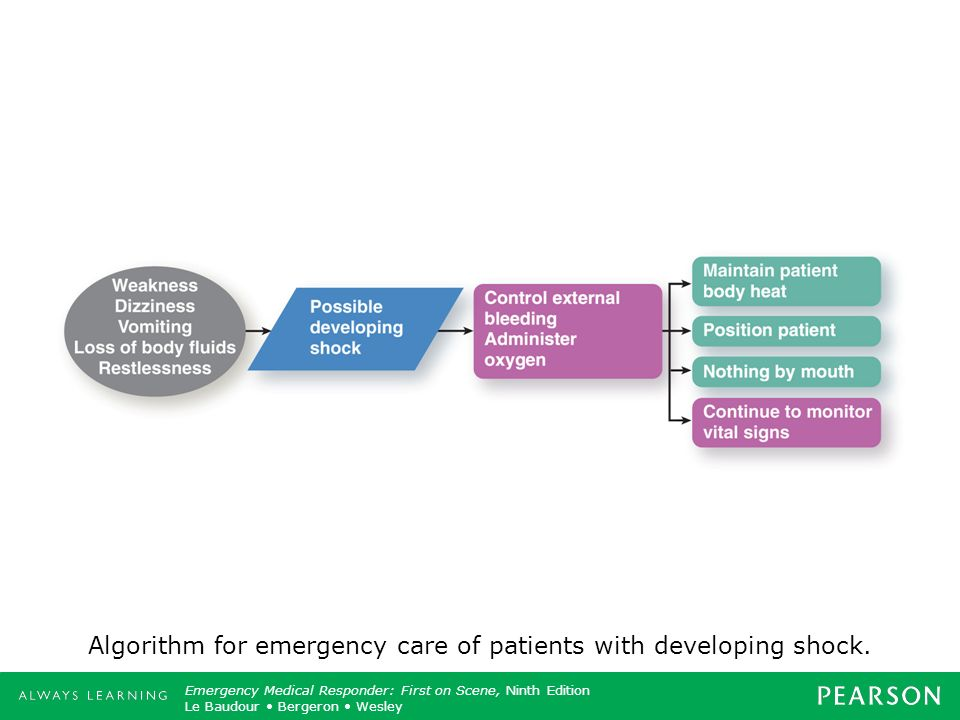 Algorithm for emergency care of patients with developing shock.