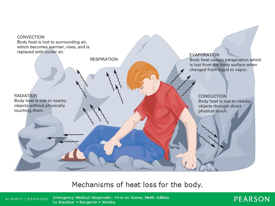 Mechanisms of heat loss for the body.