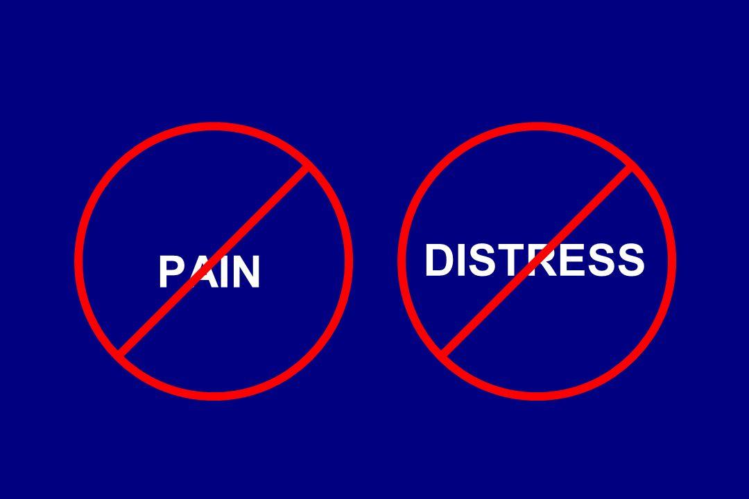 PAIN DISTRESS