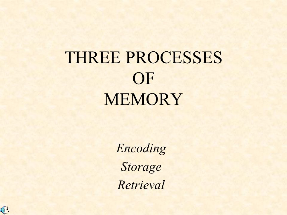 THREE PROCESSES OF MEMORY - ppt download