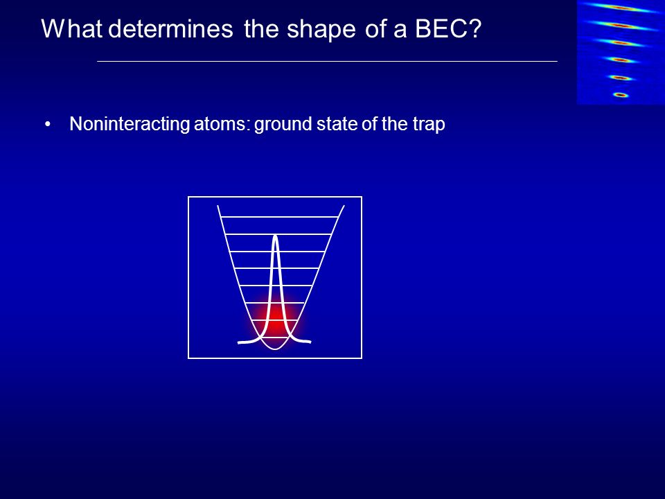 What determines the shape of a BEC