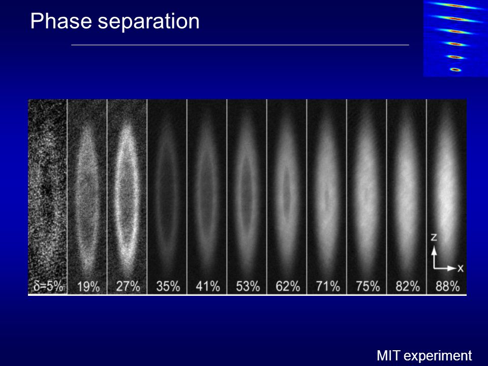 Phase separation MIT experiment