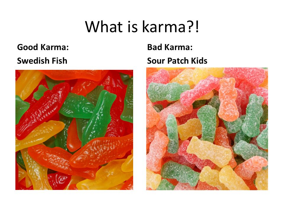 The evolution of hinduism ppt download for What is swedish fish