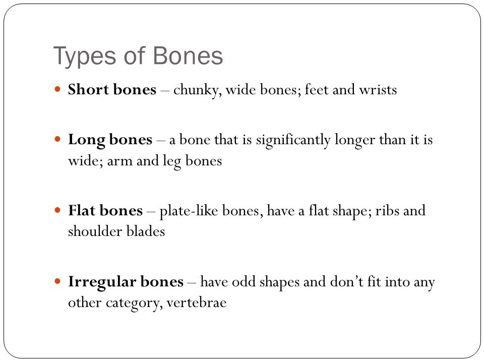 Types of Bones Short bones – chunky, wide bones; feet and wrists
