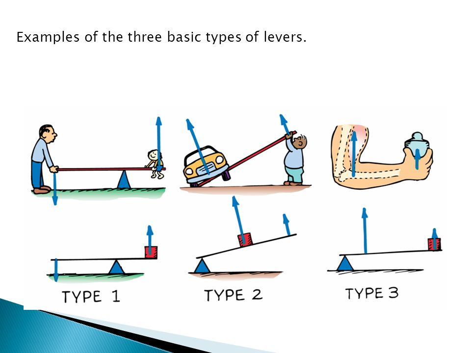 Examples Of Levers : Energy the ability to do work ppt video online download