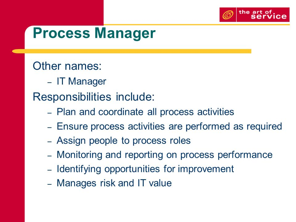 it manager roles and responsibilities pdf