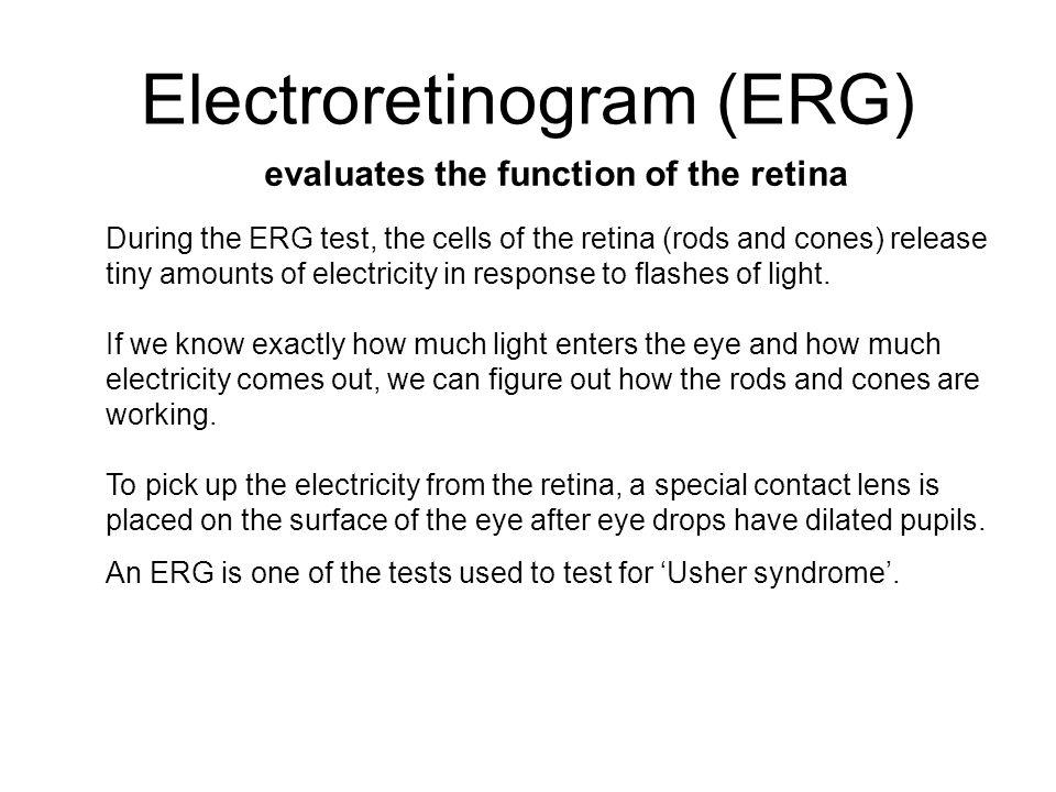 Electroretinogram (ERG)