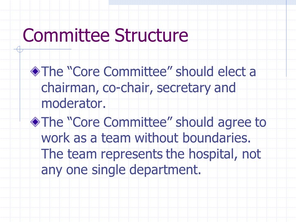 Committee Structure The Core Committee should elect a chairman, co-chair, secretary and moderator.