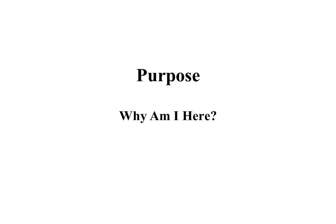 Purpose Why Am I Here Why am I here