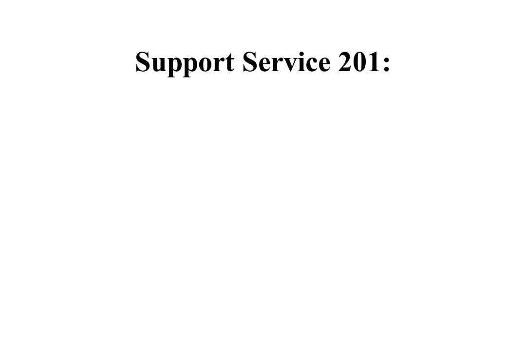 Support Service 201: