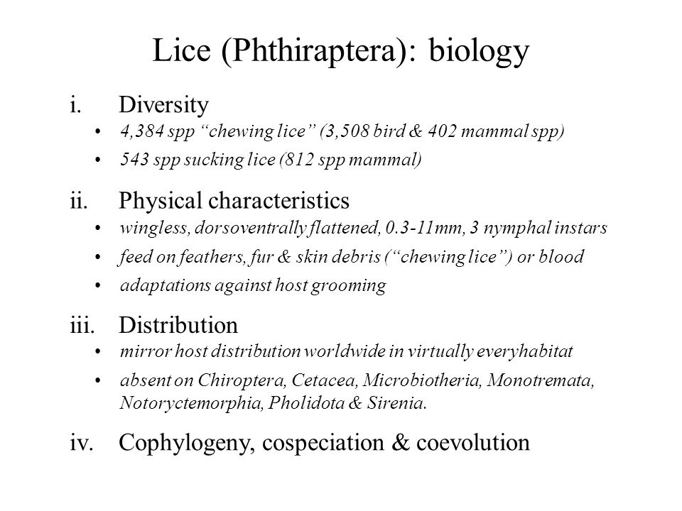 Lice (Phthiraptera): biology