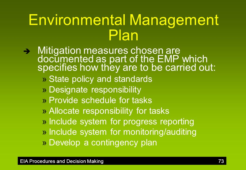 environmental management and decision making for Using a decision-making process model organization's strategy interrelated to environmental factors management and decision-making results management.