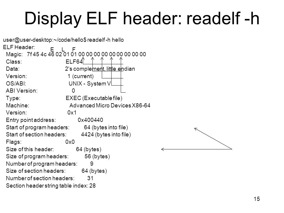 Display ELF header: readelf -h
