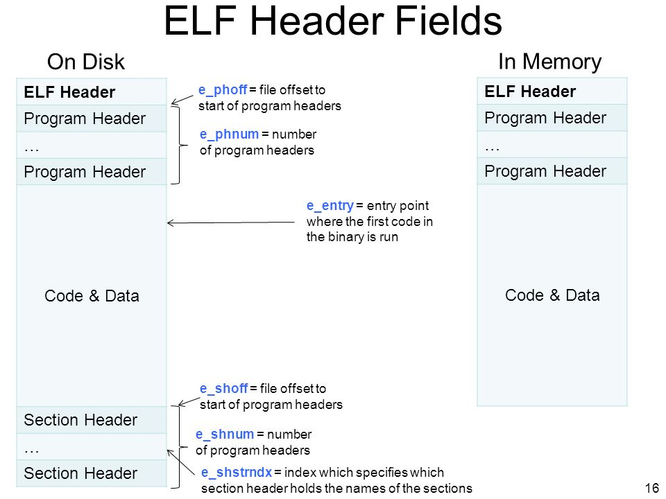 ELF Header Fields On Disk In Memory ELF Header Program Header …