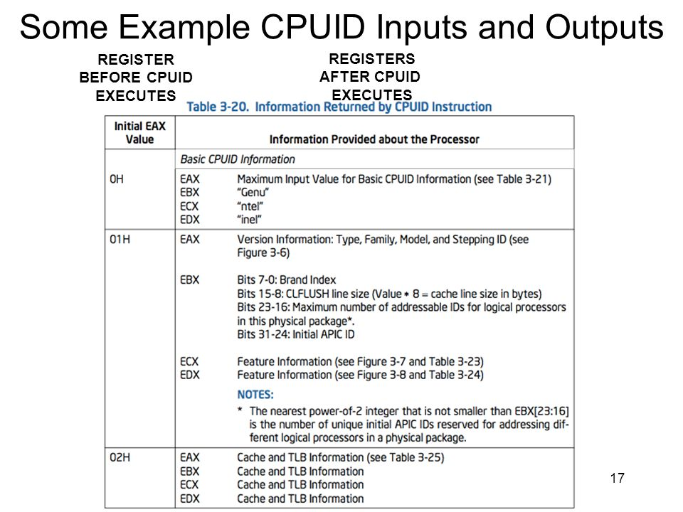Some Example CPUID Inputs and Outputs