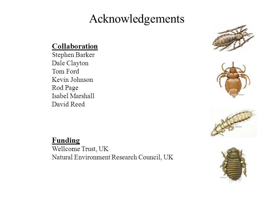 Acknowledgements Collaboration Funding Stephen Barker Dale Clayton