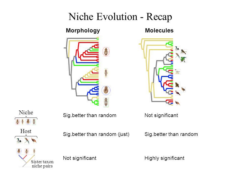 Niche Evolution - Recap