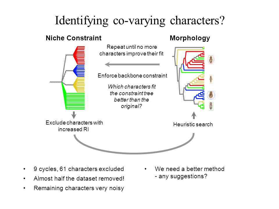 Identifying co-varying characters