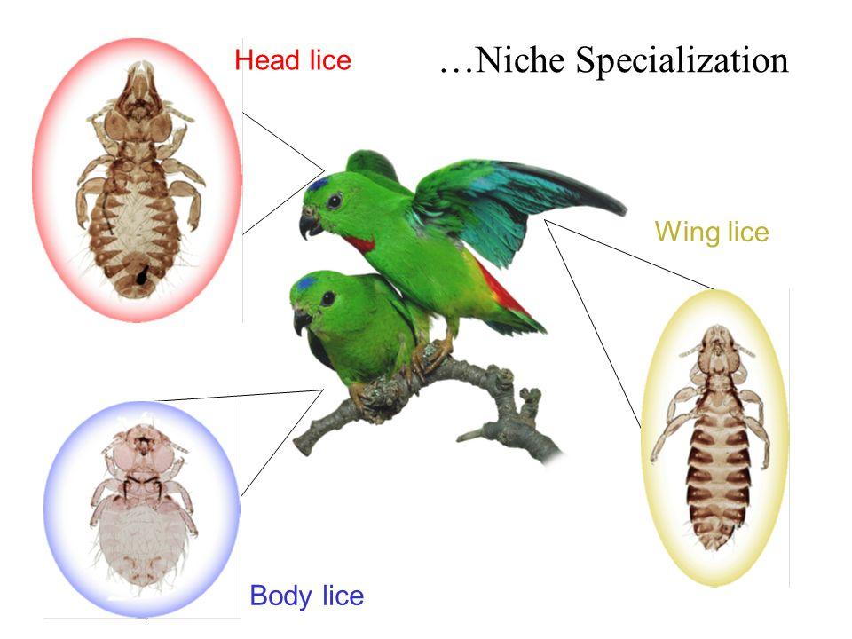 …Niche Specialization
