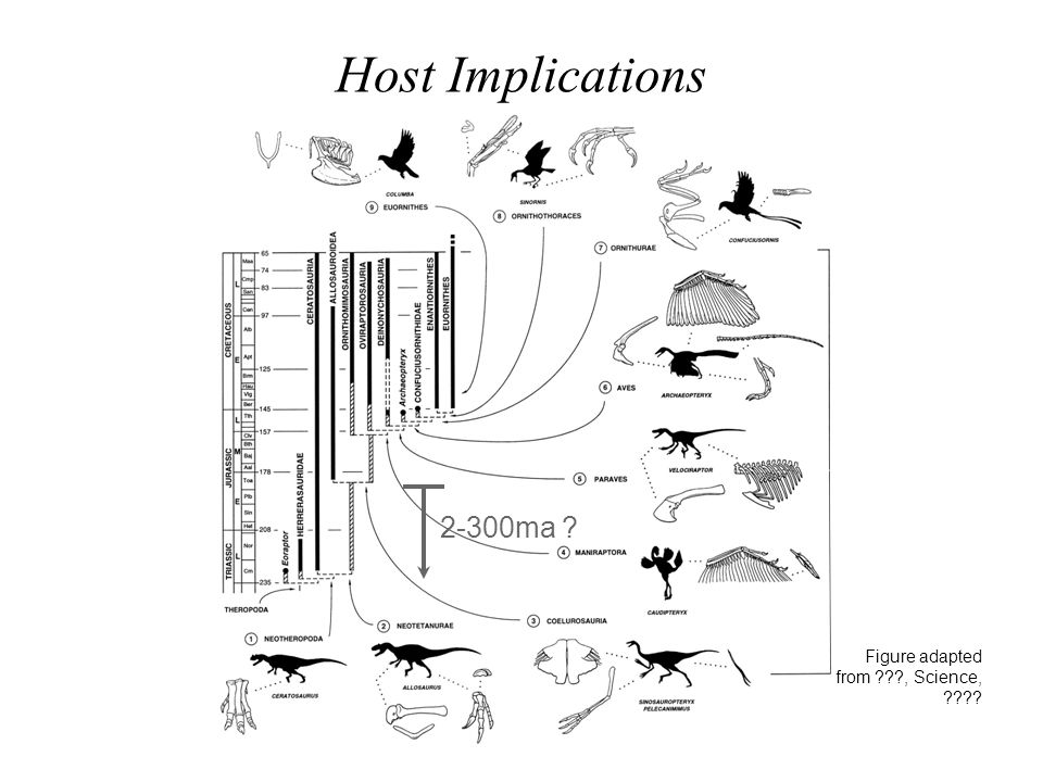 Host Implications 2-300ma Figure adapted from , Science,