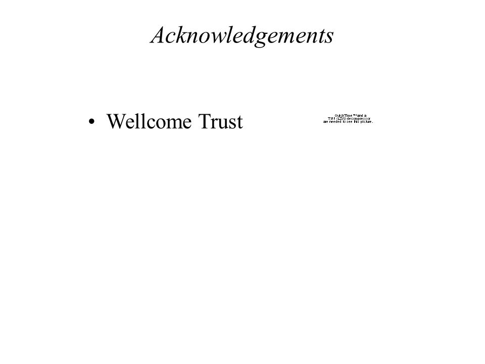 Acknowledgements Wellcome Trust