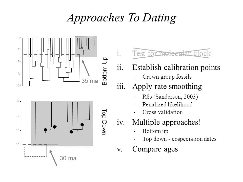 Approaches To Dating Test for molecular clock Compare ages