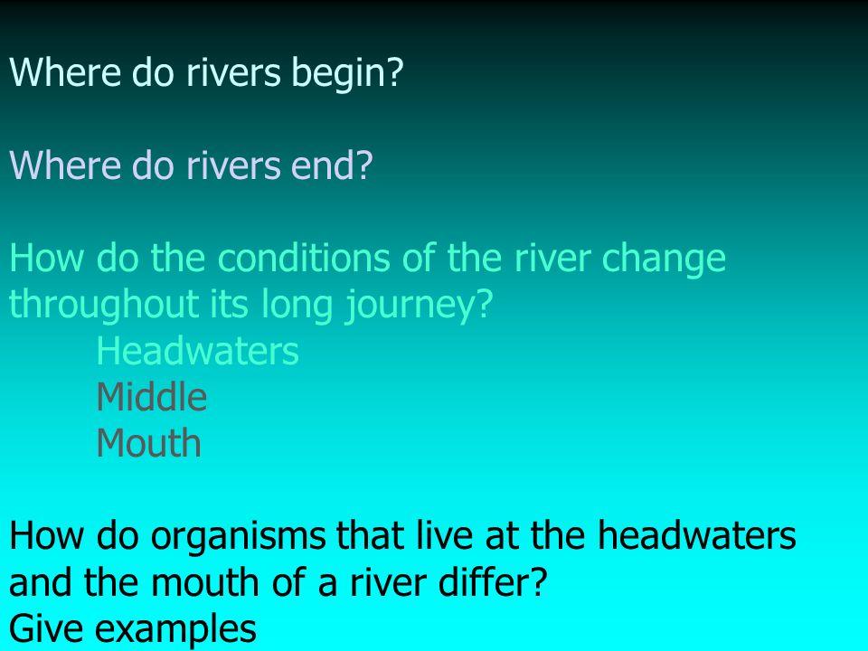 Aquatic Biomes Marine Freshwater Freshwater Ppt Video