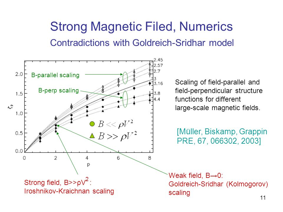 Strong Magnetic Filed, Numerics