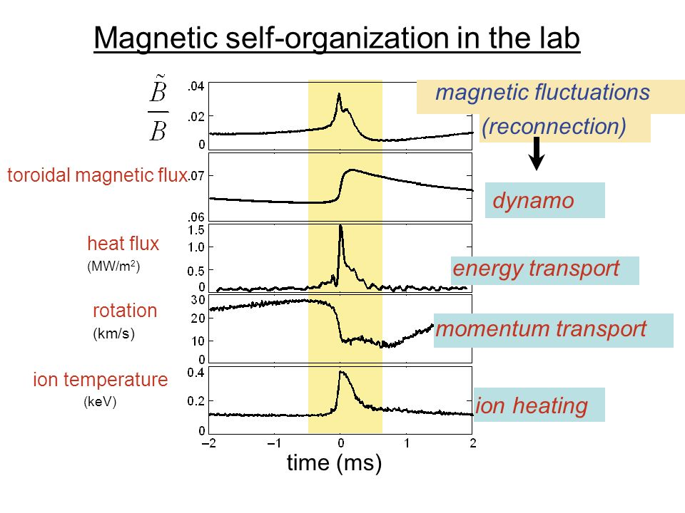 Magnetic self-organization in the lab