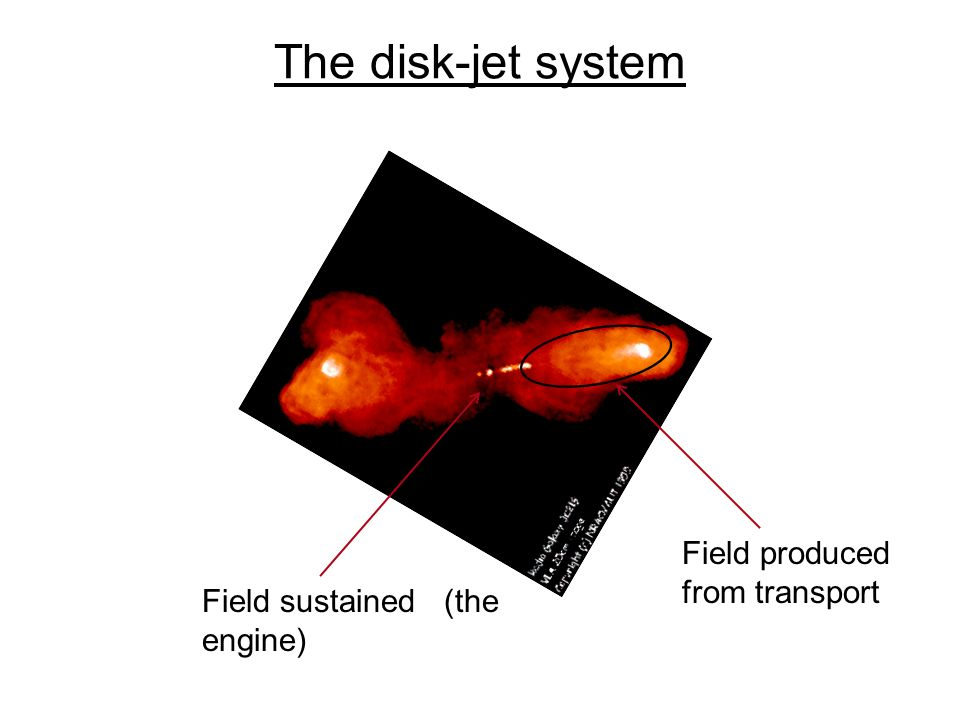 The disk-jet system Field produced from transport